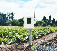 美国Davis 06345CS无线土壤温湿度站